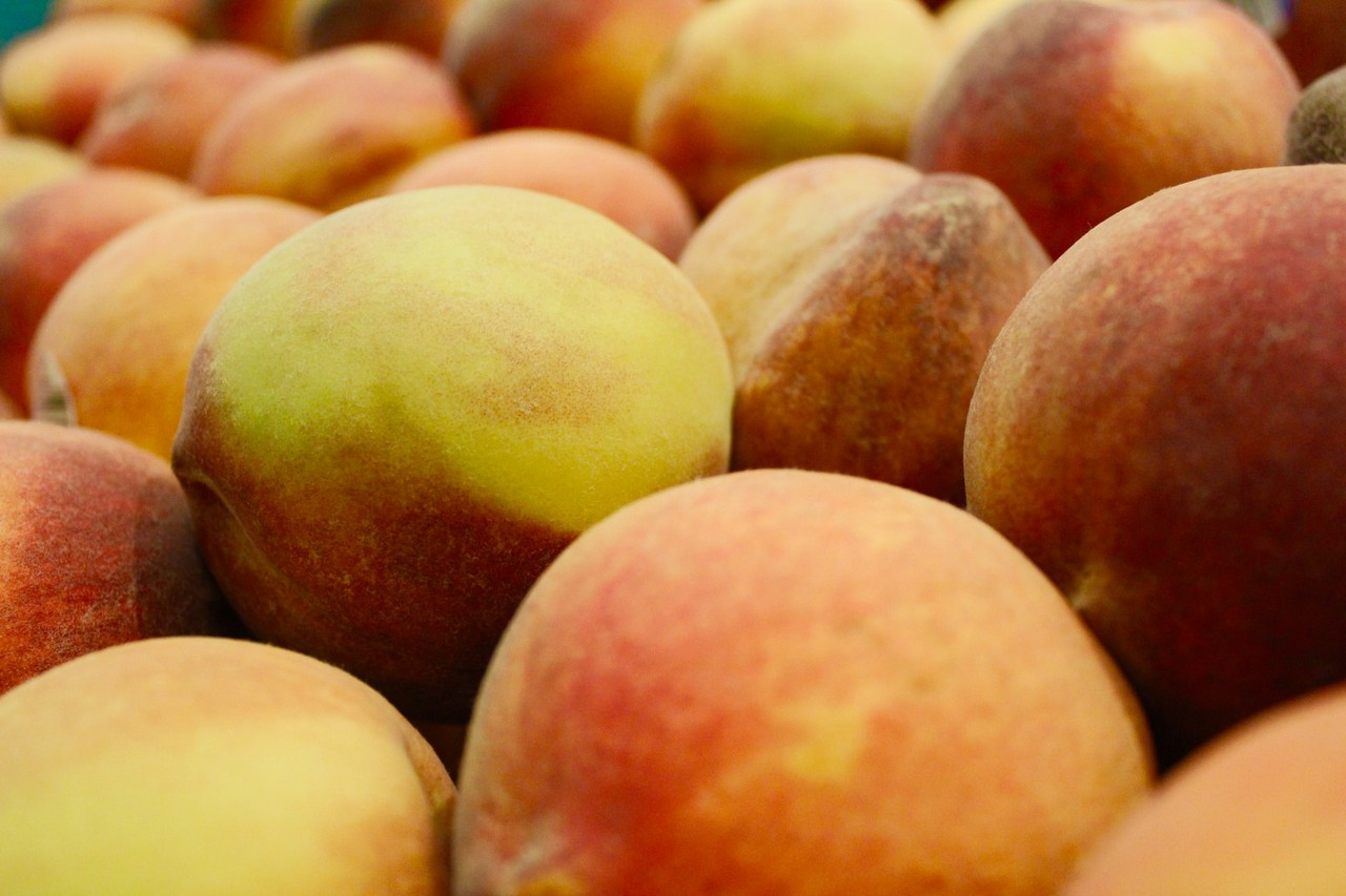 "Picture for article ""The History of Palisade Peaches"""