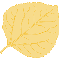 La Plata Community Clinic logo