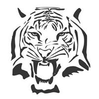 Tiger Electric Inc logo