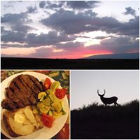 Bid-U-Well Guest Ranch logo