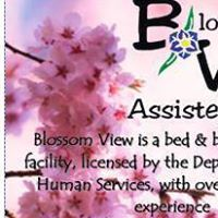 Blossom View Assisted Living logo