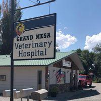 Grand Mesa Veterinary Hospital logo