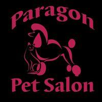 Paragon Pet Salon logo