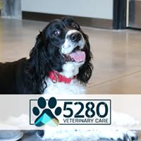 5280 Veterinary Care logo