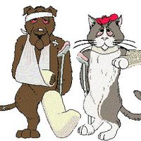 Broadview Animal Clinic logo