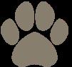 Simpawtico - Denver logo