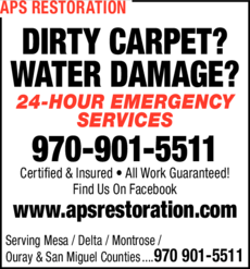 Print Ad of Aps A Professional Service